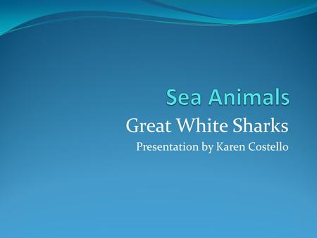Great White Sharks Presentation by Karen Costello.