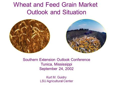 Wheat and Feed Grain Market Outlook and Situation Southern Extension Outlook Conference Tunica, Mississippi September 24, 2002 Kurt M. Guidry LSU Agricultural.