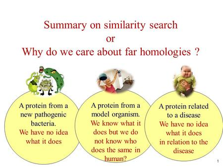 1 Summary on similarity search or Why do we care about far homologies ? A protein from a new pathogenic bacteria. We have no idea what it does A protein.