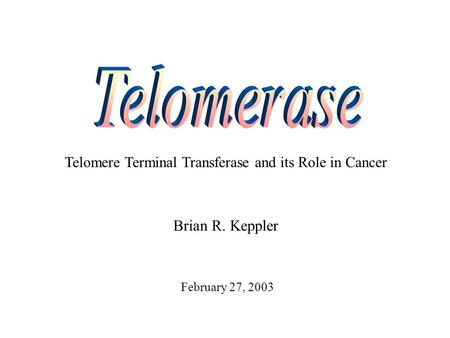 Telomere Terminal Transferase and its Role in Cancer Brian R. Keppler February 27, 2003.