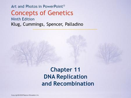 Copyright © 2009 Pearson Education, Inc. Art and Photos in PowerPoint ® Concepts of Genetics Ninth Edition Klug, Cummings, Spencer, Palladino Chapter 11.