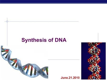 AP Biology 2007-2008 Synthesis of DNA June.21.2010.
