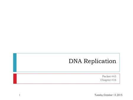 DNA Replication Packet #43 Chapter #16 Tuesday, October 13, 20151.