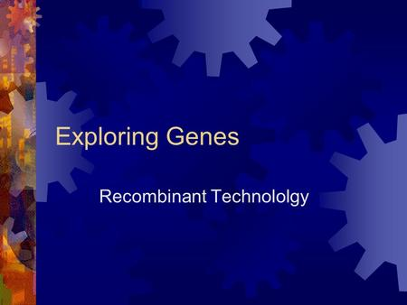 Exploring Genes Recombinant Technololgy. Restriction Enzymes  What are restriction enzymes and how are they used?  enzymes that recognize specific base.