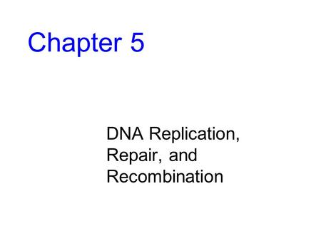 Chapter 5 DNA Replication, Repair, and Recombination.