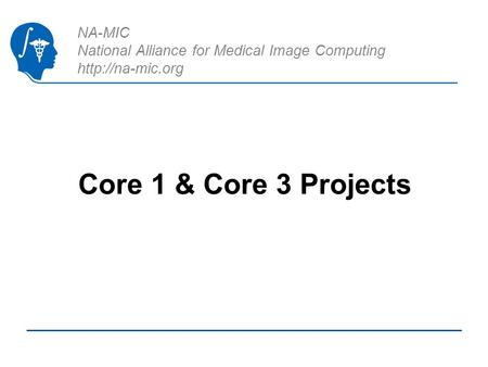 NA-MIC National Alliance for Medical Image Computing  Core 1 & Core 3 Projects.