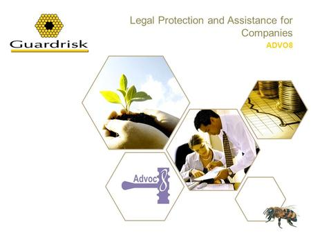 Legal Protection and Assistance for Companies ADVO8.