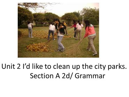 Unit 2 I'd like to clean up the city parks. Section A 2d/ Grammar.