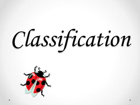 Classification. What is classification? Classification is the process of arranging organisms into groups based on similarities.