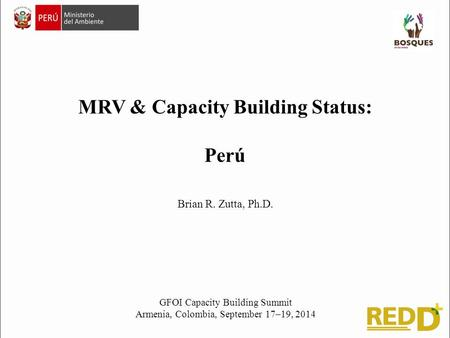 MRV & Capacity Building Status: Perú GFOI Capacity Building Summit Armenia, Colombia, September 17–19, 2014 Brian R. Zutta, Ph.D.