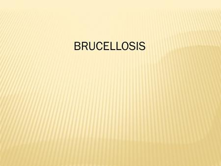BRUCELLOSIS. Brucellosis is also known as Bang's Disease. Brucellosis is known as a contagious abortion disease in animals. In humans, the disease is.