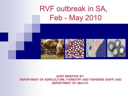 RVF outbreak in SA, Feb - May 2010 JOINT BRIEFING BY: DEPARTMENT OF AGRICULTURE, FORESTRY AND FISHERIES (DAFF) AND DEPARTMENT OF HEALTH.