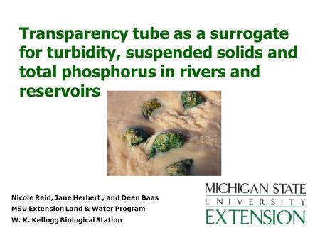Nicole Reid, Jane Herbert, and Dean Baas MSU Extension Land & Water Program W. K. Kellogg Biological Station Transparency tube as a surrogate for turbidity,