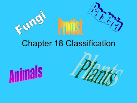 Chapter 18 Classification. What is Classification? Classification is the grouping of objects or information based on similarities. Can you name some things.