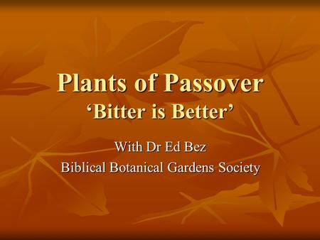 Plants of Passover 'Bitter is Better' With Dr Ed Bez Biblical Botanical Gardens Society.