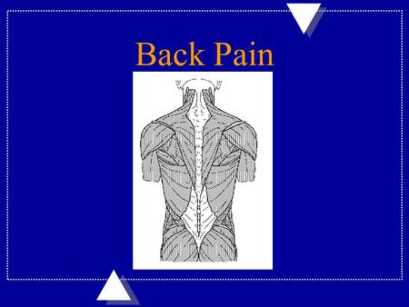 Back Pain. Spinal Abnormalities u Spinals abnormalities are either functional (muscle) or structural (bone) in nature. –Functional low back pain benefits.