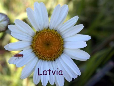 Latvia. Līgo and Jāņi ( Midsummer Day) Jāņi is a Latvian festival held in the night from 23 June to 24 June to celebrate the summer solstice (Midsummer),