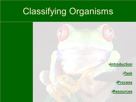 Classifying Organisms  Introduction Introduction  Task Task  Process Process  Resources Resources.