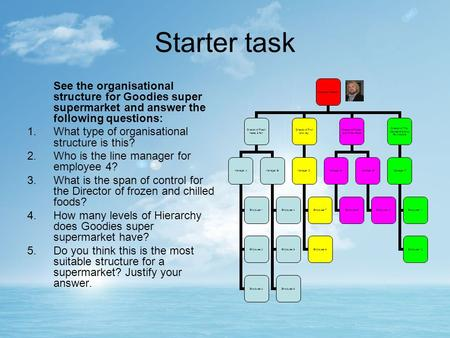 Starter task See the organisational structure for Goodies super supermarket and answer the following questions: 1.What type of organisational structure.
