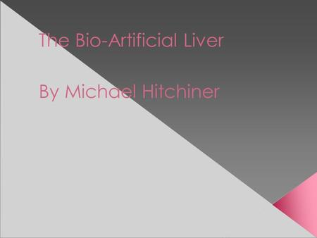 The Bio-Artificial Liver