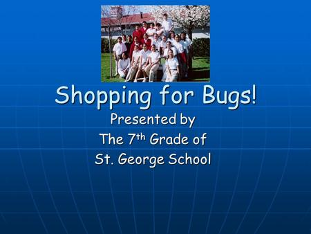 Shopping for Bugs! Presented by The 7 th Grade of St. George School.