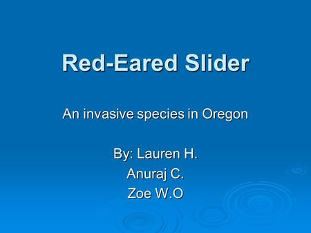 Red-Eared Slider An invasive species in Oregon By: Lauren H. Anuraj C. Zoe W.O.