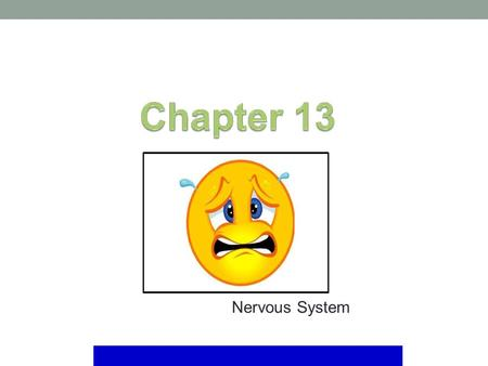 Nervous System. Mosby items and derived items © 2008 by Mosby, Inc., an affiliate of Elsevier Inc. The nervous system is the communication and control.