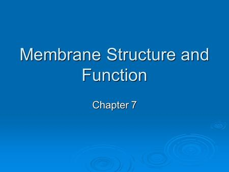 Membrane Structure and Function Chapter 7. Plasma Membrane  The boundary that separates the living cell from its nonliving surroundings.  Surrounds.