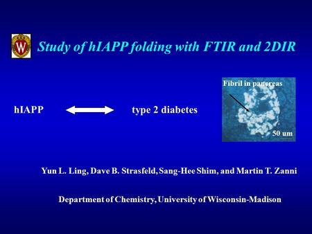 Study of hIAPP folding with FTIR and 2DIR Yun L. Ling, Dave B. Strasfeld, Sang-Hee Shim, and Martin T. Zanni Department of Chemistry, University of Wisconsin-Madison.