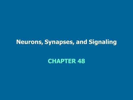 Neurons, Synapses, and Signaling CHAPTER 48. Figure 48.1 Overview of a vertebrate nervous system.