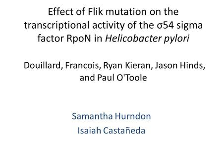 Effect of Flik mutation on the transcriptional activity of the σ54 sigma factor RpoN in Helicobacter pylori Douillard, Francois, Ryan Kieran, Jason Hinds,