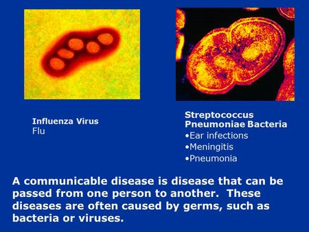 A communicable disease is disease that can be passed from one person to another. These diseases are often caused by germs, such as bacteria or viruses.