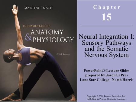 Copyright © 2009 Pearson Education, Inc., publishing as Pearson Benjamin Cummings C h a p t e r 15 Neural Integration I: Sensory Pathways and the Somatic.