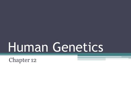 Human Genetics Chapter 12. Pedigrees A pedigree is a graphic representation of human inheritance. Squares = males Circles = females Shaded circles/squares.