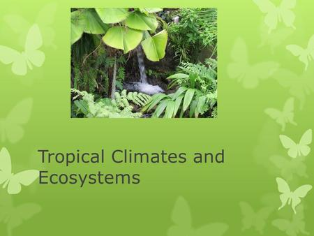 Tropical Climates and Ecosystems.  The tropics are located between the Tropic of Cancer (23.4378 °N) and the Tropic of Capricorn (23.4378 °S)  In this.