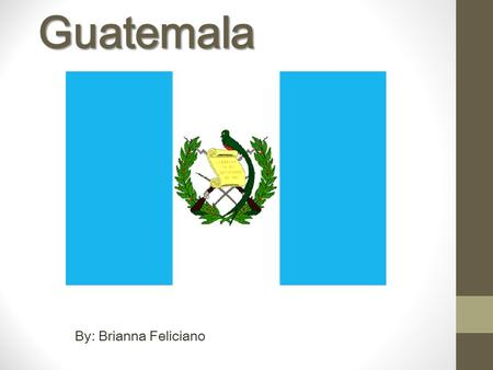 Guatemala By: Brianna Feliciano. The Meaning Of The Flag The Crossed Rifles and Bird represent that the people of the Guatemala country defend themselves.
