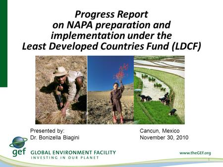 Progress Report on NAPA preparation and implementation under the Least Developed Countries Fund (LDCF) 1 Cancun, Mexico November 30, 2010 Presented by: