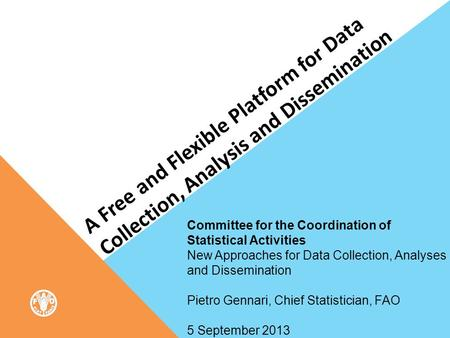 A Free and Flexible Platform for Data Collection, Analysis and Dissemination Committee for the Coordination of Statistical Activities New Approaches for.