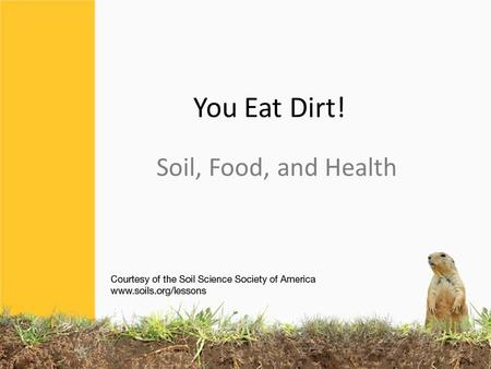 You Eat Dirt! Soil, Food, and Health. That's why we need to eat a diversity of foods. Healthy bodies need lots of nutrients.