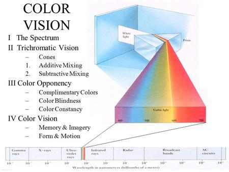 Anthony J Greene1 COLOR VISION I The Spectrum II Trichromatic Vision –Cones 1.Additive Mixing 2.Subtractive Mixing III Color Opponency –Complimentary Colors.
