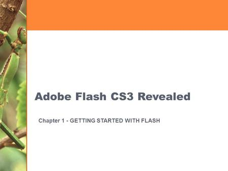 Adobe Flash CS3 Revealed Chapter 1 - GETTING STARTED WITH FLASH.