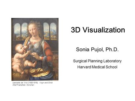 -1- 3D Visualization. Sonia Pujol, Ph.D., Harvard Medical School National Alliance for Medical Image Computing 3D Visualization Sonia Pujol, Ph.D. Surgical.