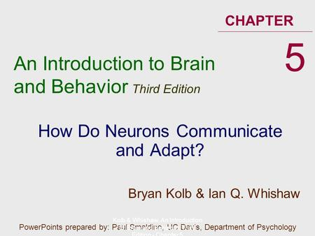 An Introduction to Brain and Behavior Third Edition CHAPTER How Do Neurons Communicate and Adapt? 5 PowerPoints prepared by: Paul Smaldino, UC Davis, Department.