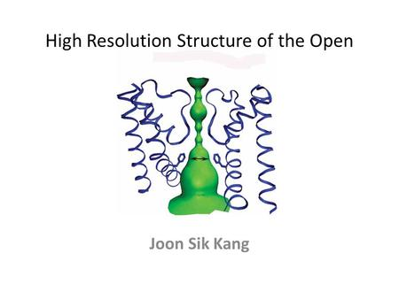 High Resolution Structure of the Open NaK Channel Joon Sik Kang.