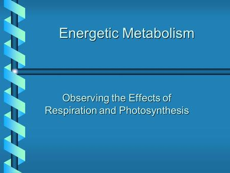 Energetic Metabolism Observing the Effects of Respiration and Photosynthesis.