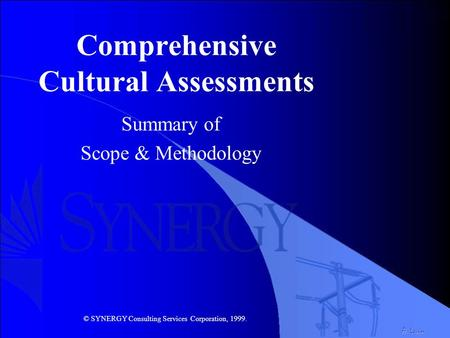 Comprehensive Cultural Assessments Summary of Scope & Methodology A. Levin © SYNERGY Consulting Services Corporation, 1999.