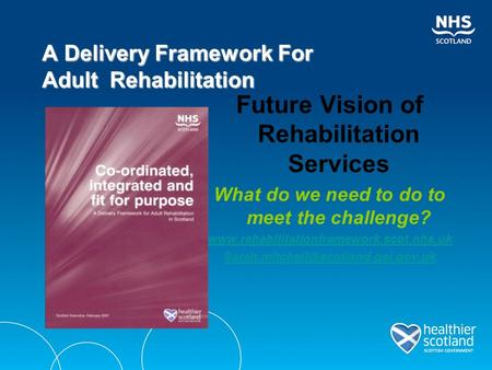 Future Vision of Rehabilitation Services What do we need to do to meet the challenge?