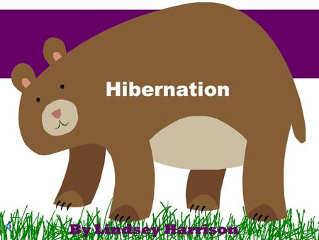 Hibernation By Lindsey Harrison As the weather gets colder in the autumn and leaves start falling from the trees, some animals start getting ready to.