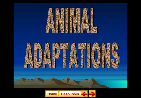 State Standard 4F. Relate animal adaptations, including behaviors, to the ability to survive stressful environmental conditions. Animal Adaptations.