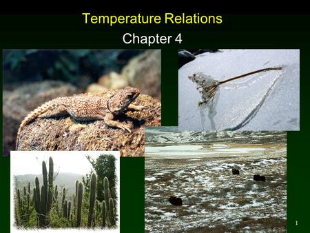 1 Temperature Relations Chapter 4. 2 Microclimates Macroclimate: Large scale weather variation. Microclimate: Small scale weather variation, usually measured.